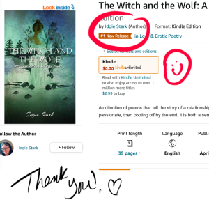 Screenshot of The Witch and the Wolf Amazon page showing #1 best seller under name.